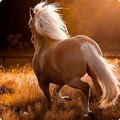 Horses Sound FX icon