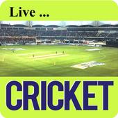 Cricket TV & IPL T20  2017 icon