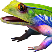 Frog 3D icon