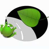 Frog Road Free icon