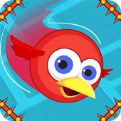 Parrot Games: Bird Games Free icon