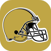 Wallpapers for New Orleans Saints Fans icon