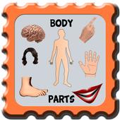 Kids Learning Body Part icon