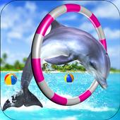 Dolphin Show Fun Game icon