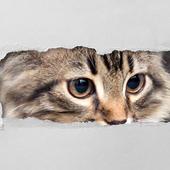 Troue moi la chatte icon