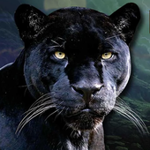 Real Black Panther Simulator icon