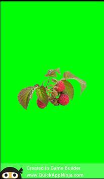 Guess The Fruits screenshot 4