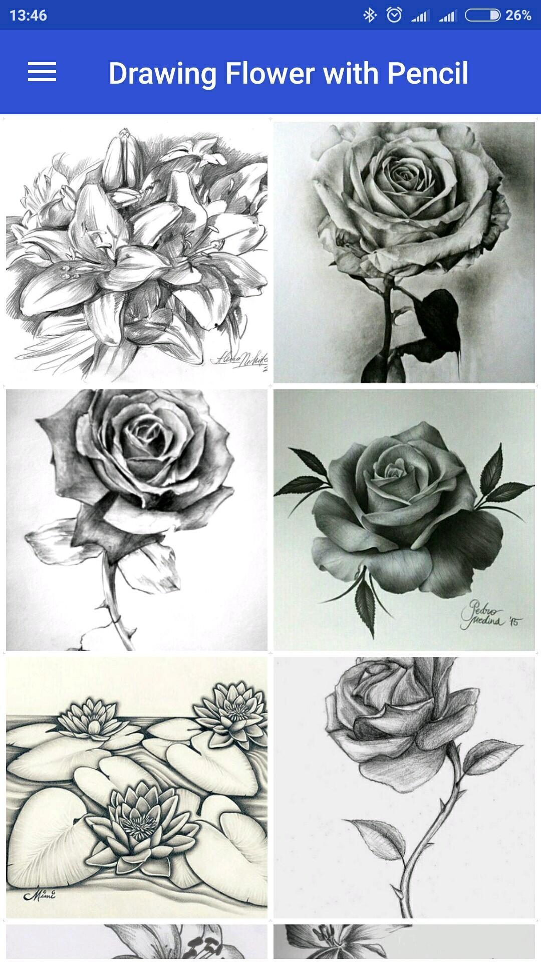 Menggambar Bunga Dengan Pensil For Android Apk Download