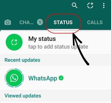New WhatsApp Status Guide poster