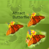 Attract Butterflies icon