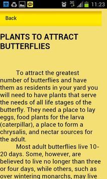 Attract Butterflies apk screenshot