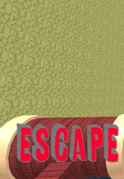 Guide for Escape Grandma's House poster