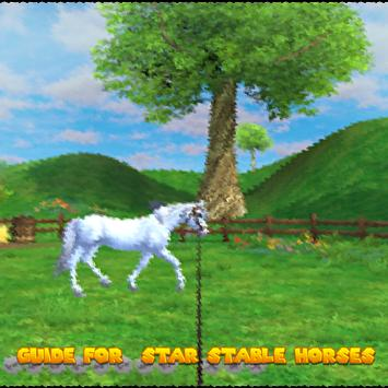 Guide For Star Stable Horses poster