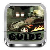 Guide For NFS icon