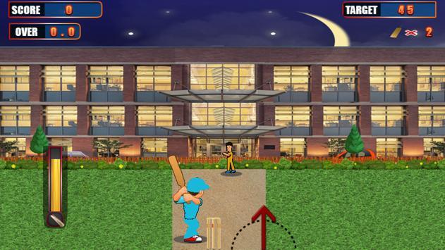 Super Street Cricket poster
