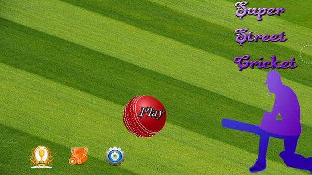 Super Street Cricket apk screenshot