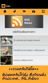 ไก่ชน screenshot 23