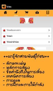 ไก่ชน screenshot 9