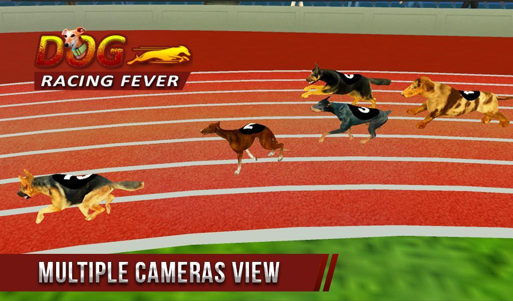 Dog Racing Fever 3d For Android Apk Download