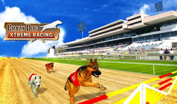 Crazy Dog Xtreme Racing poster