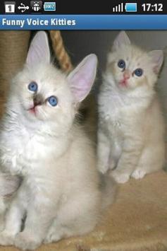 Funny Voice Kittens screenshot 4
