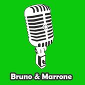 Bruno & Marrone de Letras icon