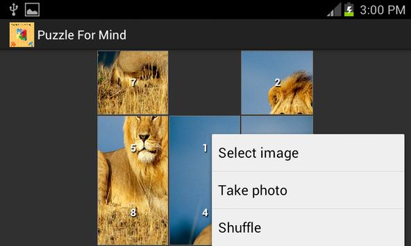 Puzzle For Our Mind apk screenshot