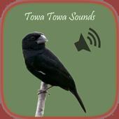 Towa Towa Sounds icon