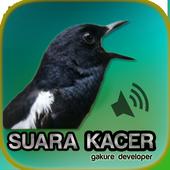 Kacer Gacor icon
