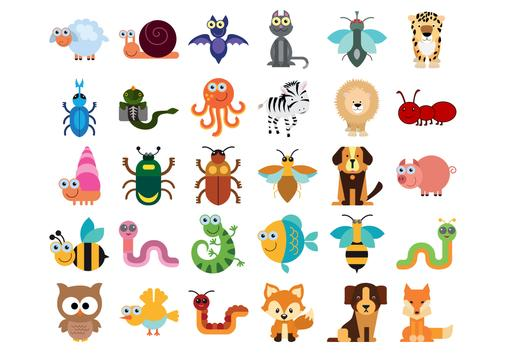 Animal Quiz for Kid poster
