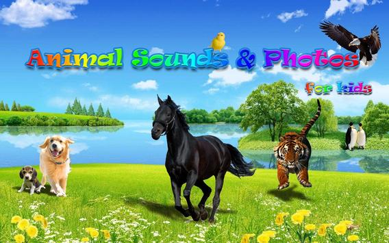 Animal Sounds&Photos for Kids poster