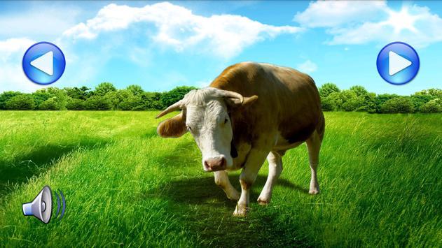 Animal Sounds&Photos for Kids apk screenshot