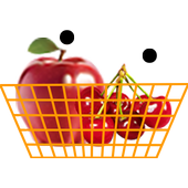 Fruits Rain icon