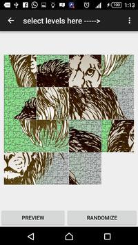 Slide Puzzle lion apk screenshot