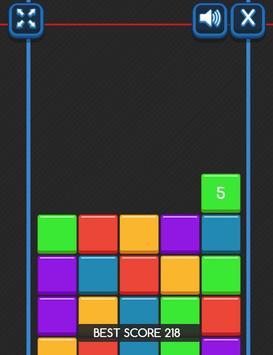 Sliding Bricks screenshot 1