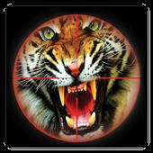 Animal Hunting 2016 icon