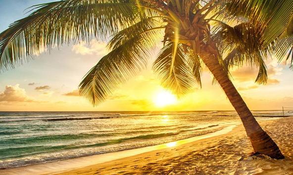 Summer Sandy Beach Puzzle poster