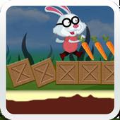 Bunny Run Jumping 3d icon