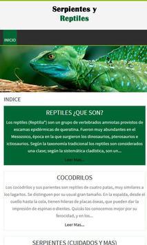 Serpientes y reptiles poster