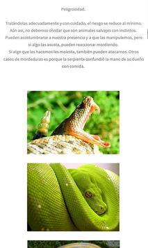 Serpientes y reptiles apk screenshot