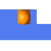 ORANGE DROP 2 icon
