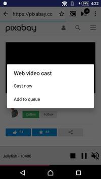 Web Video Cast Chromecast apk screenshot