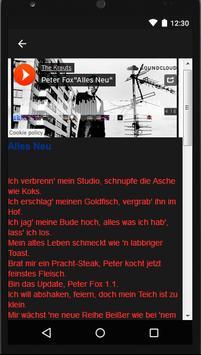 Peter Fox(Music + Lyric apk screenshot