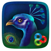Peacock GO Launcher icon