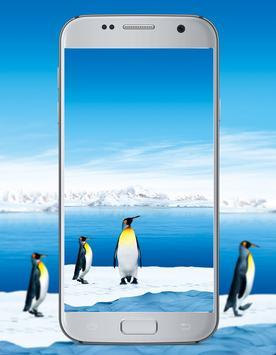 Penguin Cute Wallpaper screenshot 1