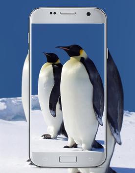 Penguin Cute Wallpaper screenshot 2