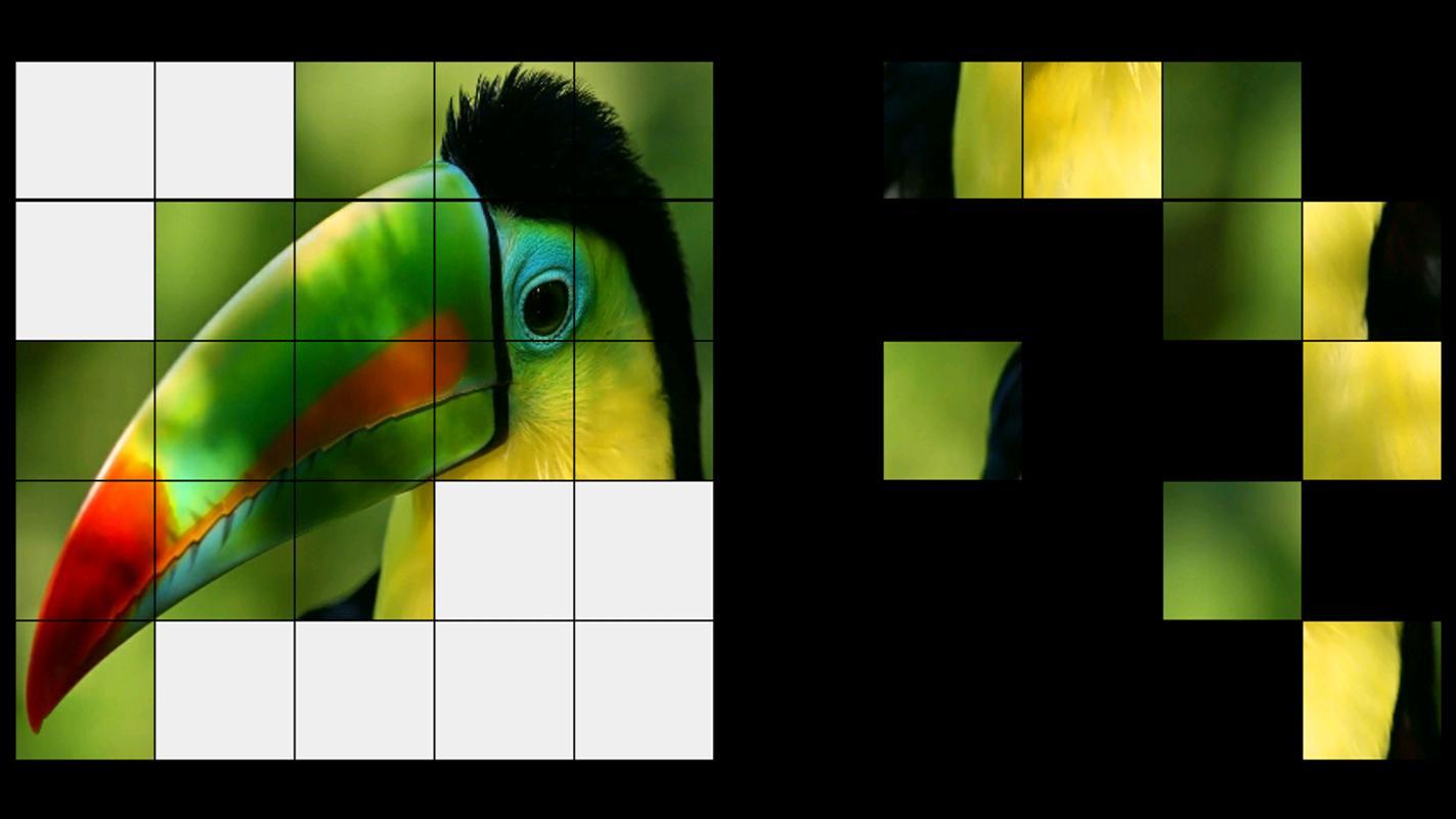 Pajaro Lwp Juegos Puzzle Descarga Apk Gratis Casual Juego Para