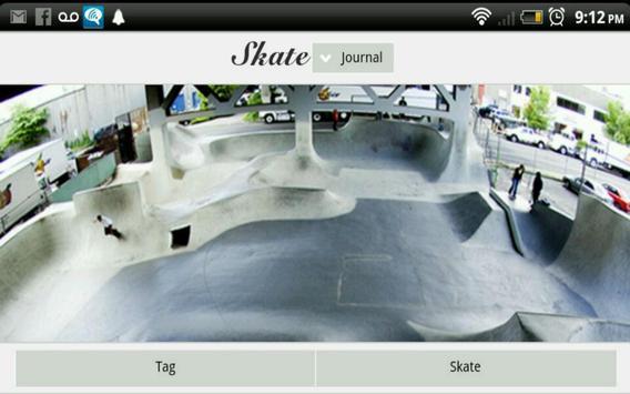 Skate Journal poster