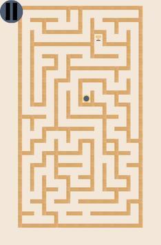 Crazy Maze poster