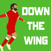 Running Down The Wing icon